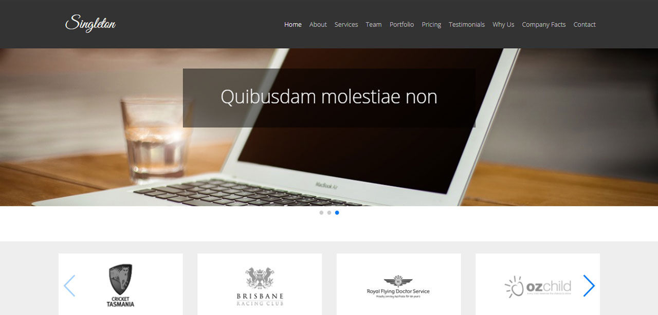 Singleton One Page Agency Theme
